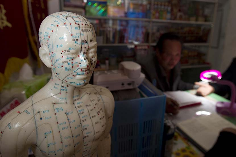 A mannequin at a traditional Chinese medicine clinic shows the meridians of the human body, Shanghai, March 2, 2011. Gao Jianping/Sixth Tone