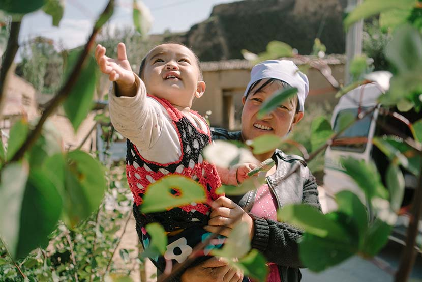 Fan Fan, Li Yongjun's grandson, plays with the apricot plum trees while being held by his grandma, Ningxia Hui Autonomous Region, Sept. 20, 2016. Xiao Muyi/Sixth Tone