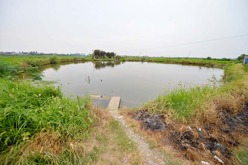In a separate case, an infant girl was thrown into a pond and died despite receiving medical treatment in Changzhou, Jiangsu province, Sept. 4, 2013. VCG