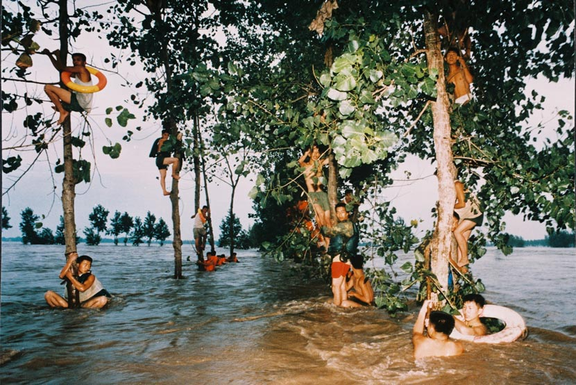 People climb trees to escape the flood in Paizhouwan Township, Hubei province, Aug. 1, 1998. Li Jing/VCG