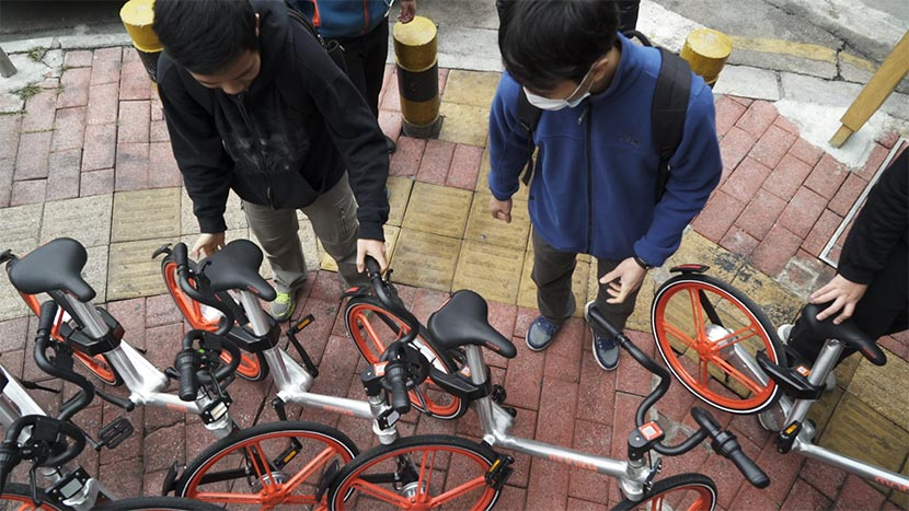 The bike hunters move improperly parked bikes to designated spaces, Guangzhou, Guangdong province, Jan. 14, 2016. Wu Yue/Sixth Tone