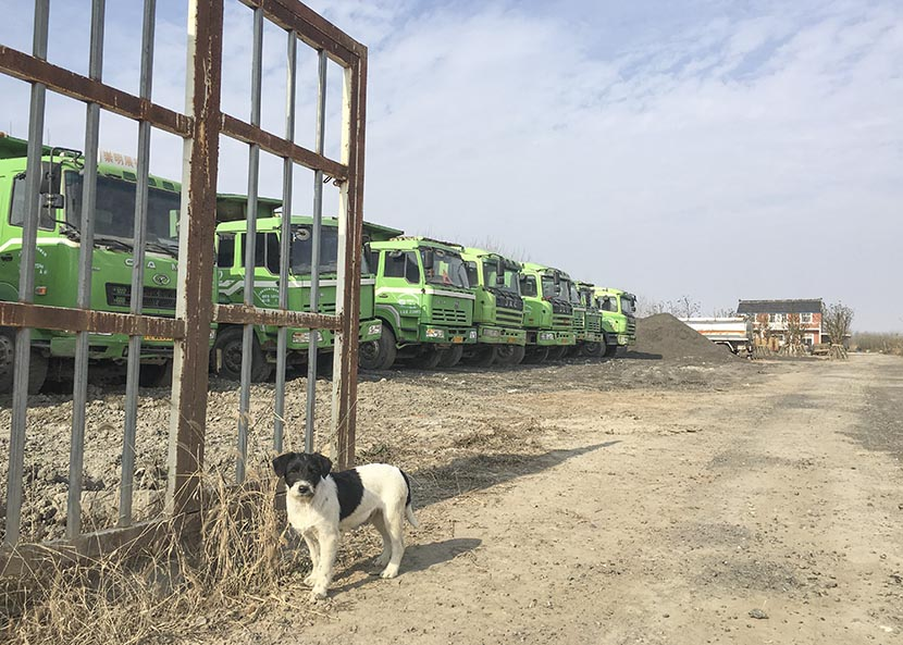 Dump trucks are parked along a dirt road, and a watchdog guards the entrance to a construction site in Xinqiao Village, Chongming Island, Shanghai, Jan. 28, 2017. Relocation efforts and construction work have been suspended for Chinese New Year. Ni Dandan/Sixth Tone