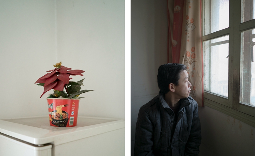 Left: A poinsettia plant sits on top of the refrigerator in Xu Hao's home; right: Xu Hao looks out a window, Shanghai, Feb. 4, 2017. Zhou Pinglang/Sixth Tone