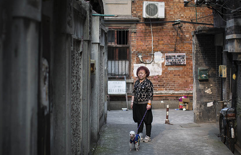A woman with her dog stands in a lane on Changle Road in Shanghai, May 11, 2016. Yang Shenlai/Sixth Tone