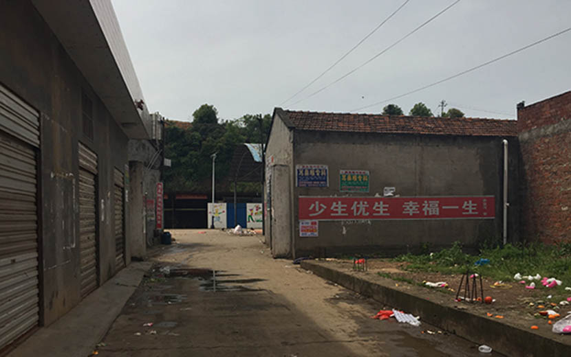 A family planning slogan warns residents not to have more than the allowed number of children, Li County, Changde City, Hunan province, July 2016. Zhao Meng/Sixth Tone