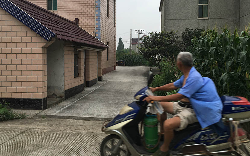 A man riding a motorcycle through Zhanhong Village, Chongming County, Shanghai, July 14, 2016. Ni Dandan/Sixth Tone