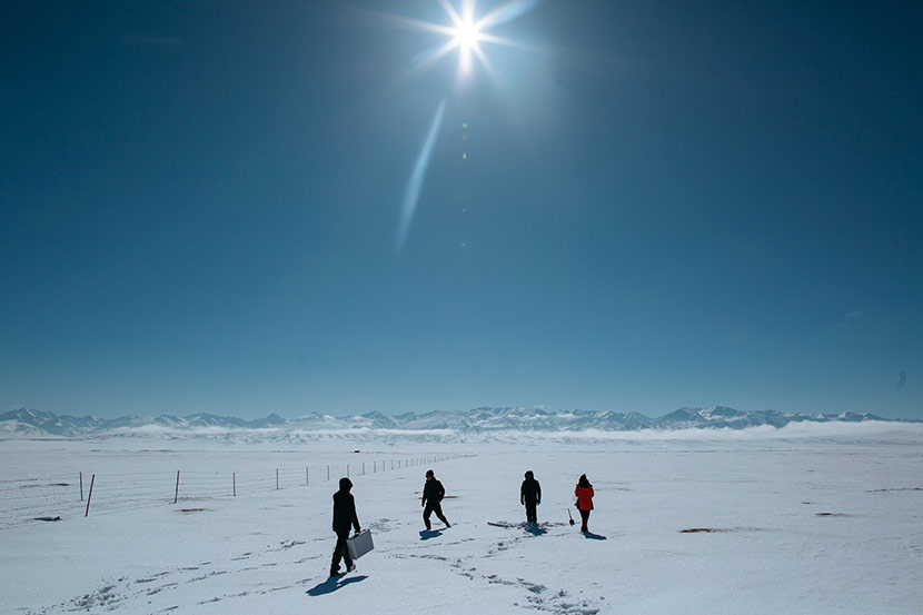 Researchers from the Xinjiang Institute of Ecology and Geography trek through snow in Bayingolin Mongolian Autonomous Prefecture, Xinjiang Uyghur Autonomous Region, March 8, 2018. Wu Huiyuan/Sixth Tone
