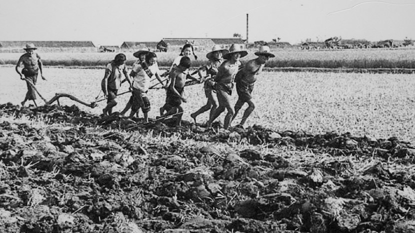 An archive photo shows people tilling a field in Xiaogang. Courtesy of Yan Hongchang