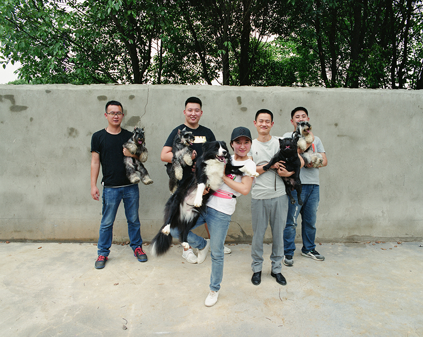 Wang Xu's dog handling team at their new training kennel in Wuhan, Hubei province, May 25, 2018. Wu Huiyuan/Sixth Tone