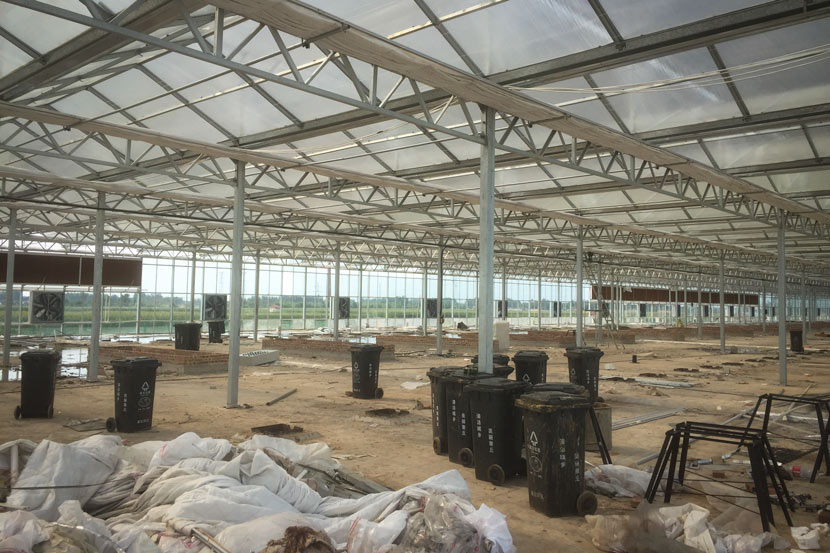 A view of the construction site for Li Yanrong's new cockroach farm in Jinan, Shandong province, Aug. 16, 2018. He plans to build a greenhouse on top of the warehouse. Qian Zhecheng/Sixth Tone