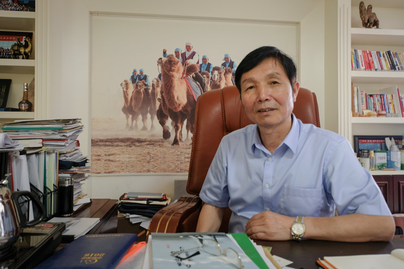 Chen Gangliang poses for a photo in his office at the headquarters of Xinjiang Wangyuan Camel Milk Co. Ltd. in Fuhai County, Xinjiang Uyghur Autonomous Region, July 8, 2018. Bibek Bhandari/Sixth Tone