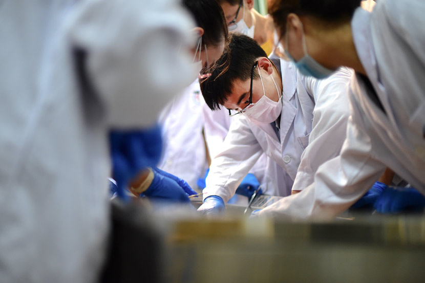 Medical students during an anatomy class at a school in Qingdao, Shandong province, Sept. 19, 2017. VCG