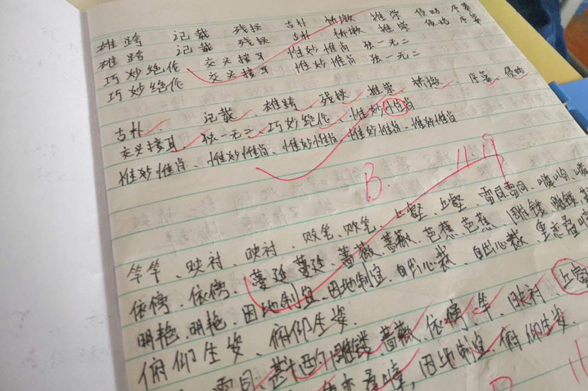 Luo's homework for Chinese class in Linhai, Zhejiang province, January 2019. Ming Que for Sixth Tone