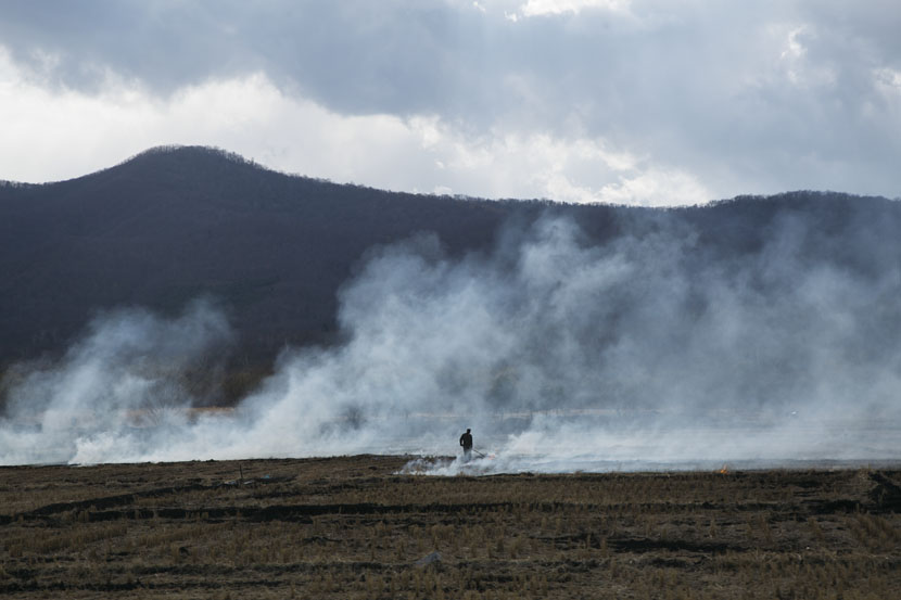 A villager burns straw to fertilize crops in Hunchun, Jilin province, April 26, 2019. Wu Huiyuan/Sixth Tone