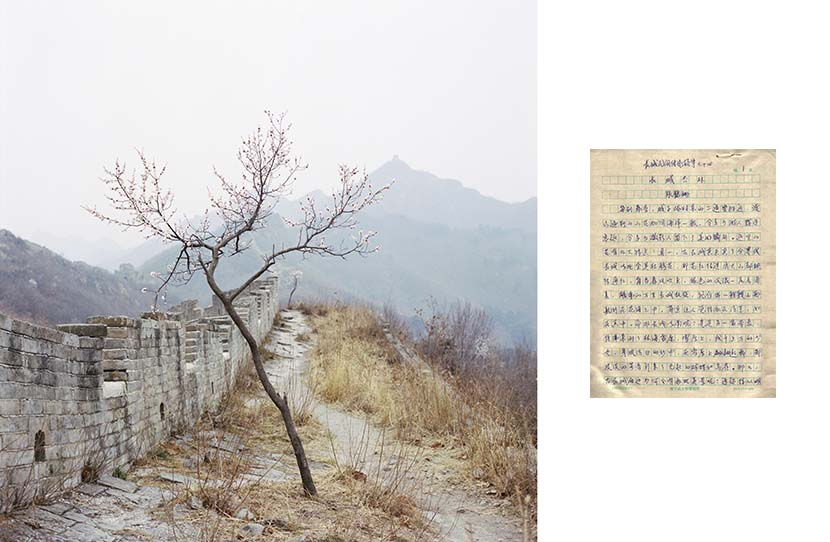 "Left: A flowering tree on the Long Wall, Yiyuankou Village, Qinghuangdao, Hebei province, 2017; right: A handwritten traditional folk tale about the Long Wall by Zhang Heshan, Chengziyu Village, Qinhuangdao, Hebei province, 2017. From ""Watering my Horse by a Spring at the Foot of the Long Wall"""