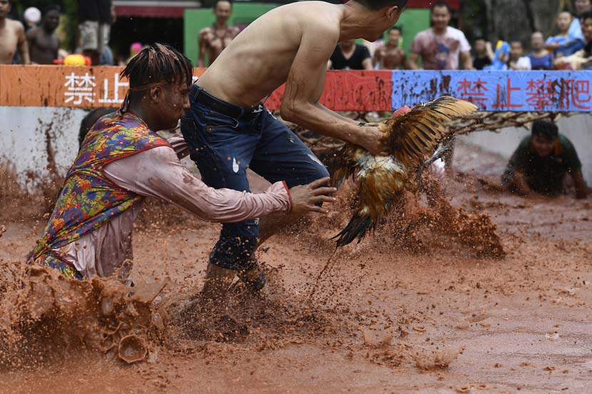 Two men compete to catch a chicken during an event at a theme park in Chongqing, June 29, 2019. VCG