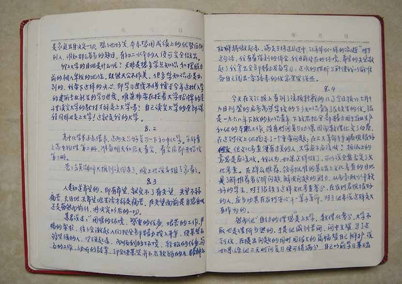 A view of Liu Bingkang's diary from 1973, Hefei, Anhui province, Dec. 25, 2006. That year, he wrote in his diary, 'Disappointment is not real pain; a life without hope and goals is true pain.' Courtesy of Liu Bingkang