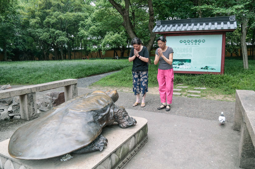 Two women pray before the bronze turtle statue at Xiyuan Temple in Suzhou, Jiangsu province, June 9, 2017. Li You/Sixth Tone