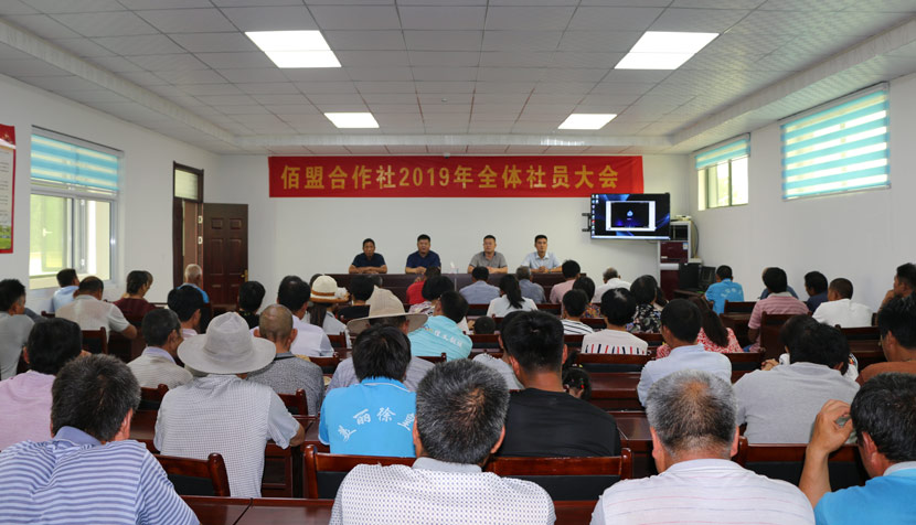 Baimeng Cooperative's annual members' meeting, Shandong province, June 20, 2019. Courtesy of Liao Yue