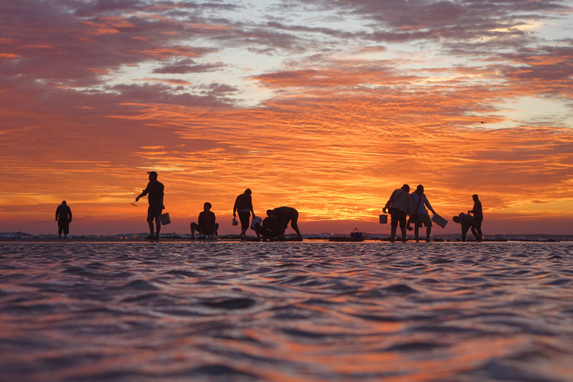 Locals go beachcombing as the sun rises in Yantai, Shandong province, Sept. 15, 2019. Tang Ke/VCG