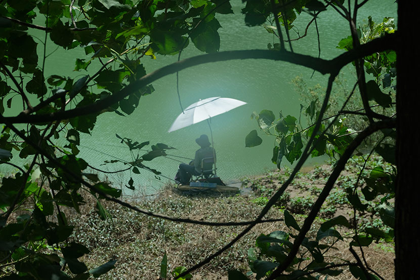 A man fishes inside Qianjiangyuan National Park in Zhejiang province, July 2019. Zhou Pinglang for Sixth Tone