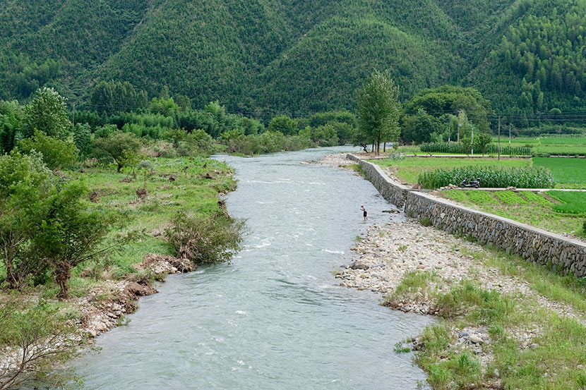 A river flows through Qianjiangyuan National Park in Zhejiang province, July 2019. Zhou Pinglang for Sixth Tone