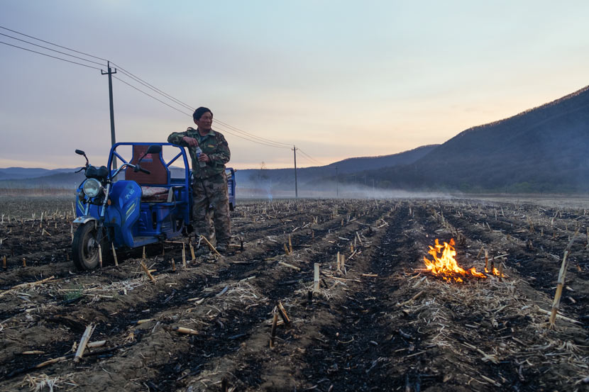 A villager burns straw on his fields in a village near Hunchun, Jilin province, April 28, 2019. Wu Huiyuan/Sixth Tone