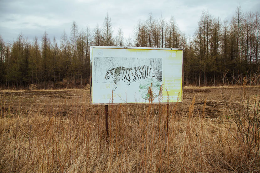 A faded billboard advertises the national park in Hunchun, Jilin province, April 30, 2019. Wu Huiyuan/Sixth Tone