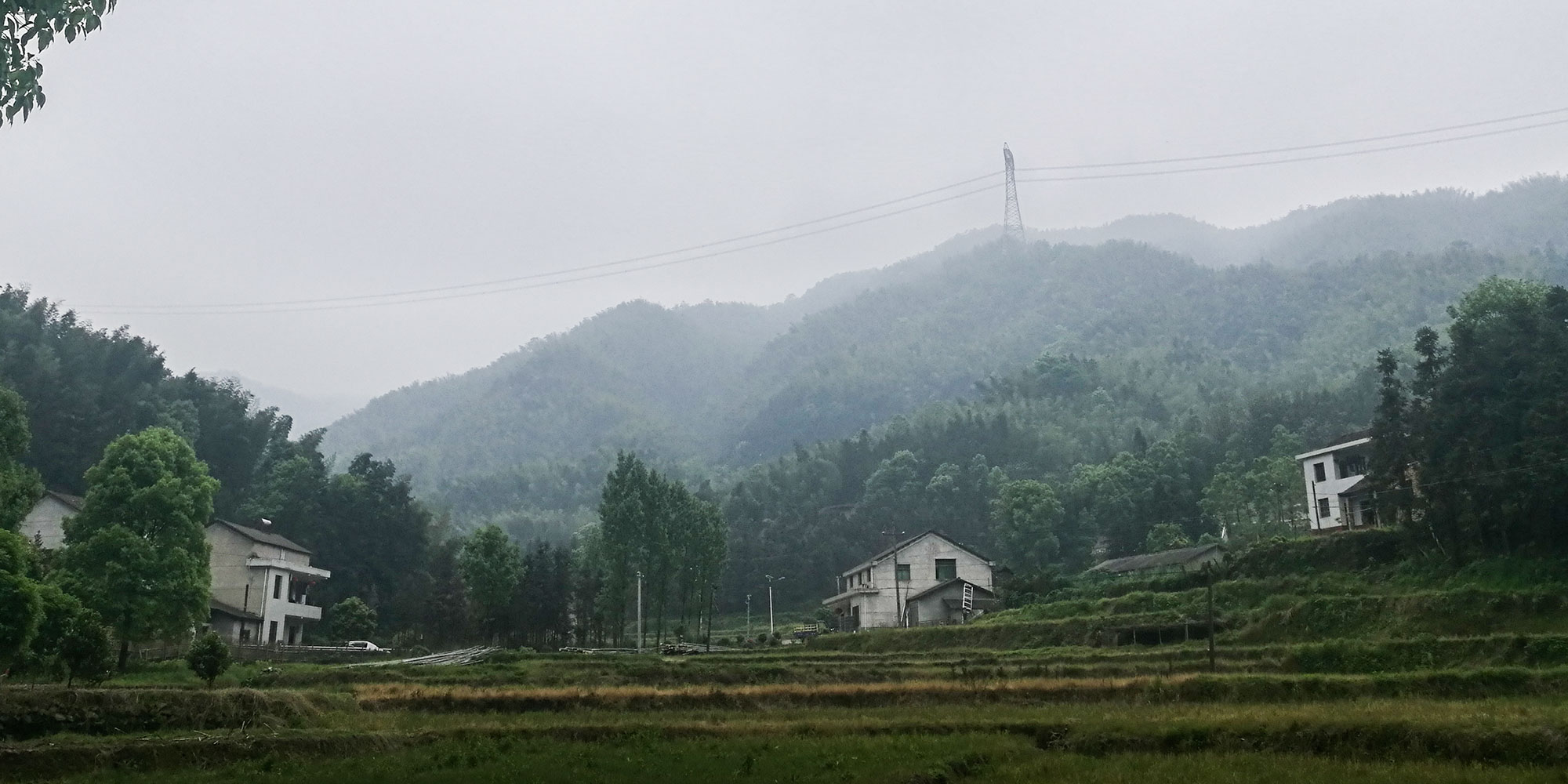 Too Costly, Too Late: Curable Liver Disease Ravages Rural China