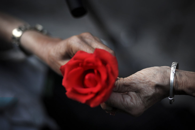An elderly man gives a rose to his wife in Suining, Sichuan province, May 19, 2018. Liu Changsong/VCG