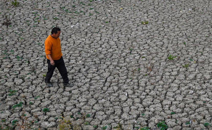 A man walks across a riverbed parched by drought in Fuyang, Anhui province, Nov. 1, 2019. 11 cities in Anhui province have suffered from drought caused by high temperatures and low rainfall since September. VCG
