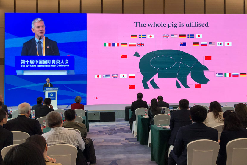 A visual aid explaining how various countries have traditionally consumed different parts of the pig is shown during the China International Meat Conference in Shanghai, Nov. 7, 2019. Fu Danni/Sixth Tone