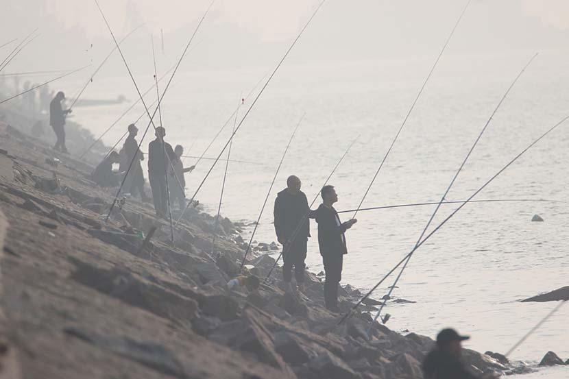 Local residents fish at Jiaozhou Bay in Qingdao, Shandong province, Nov. 9, 2019. Huang Jiexian/VCG