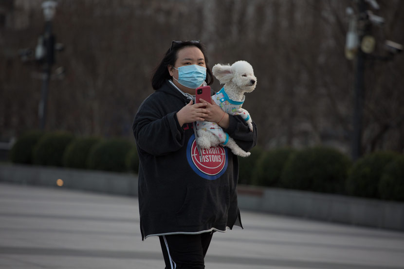A woman holds her pet dog on the Bund in Shanghai, Feb. 5, 2020. Wu Huiyuan/Sixth Tone
