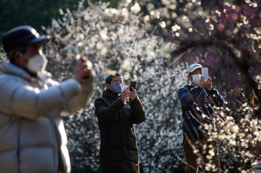 Three men take photos at the Hangzhou Botanical Garden in Zhejiang province, Feb. 20, 2020. Many of the province's tourist sites have recently reopened for the first time in weeks. Chen Zhongqiu for Sixth Tone