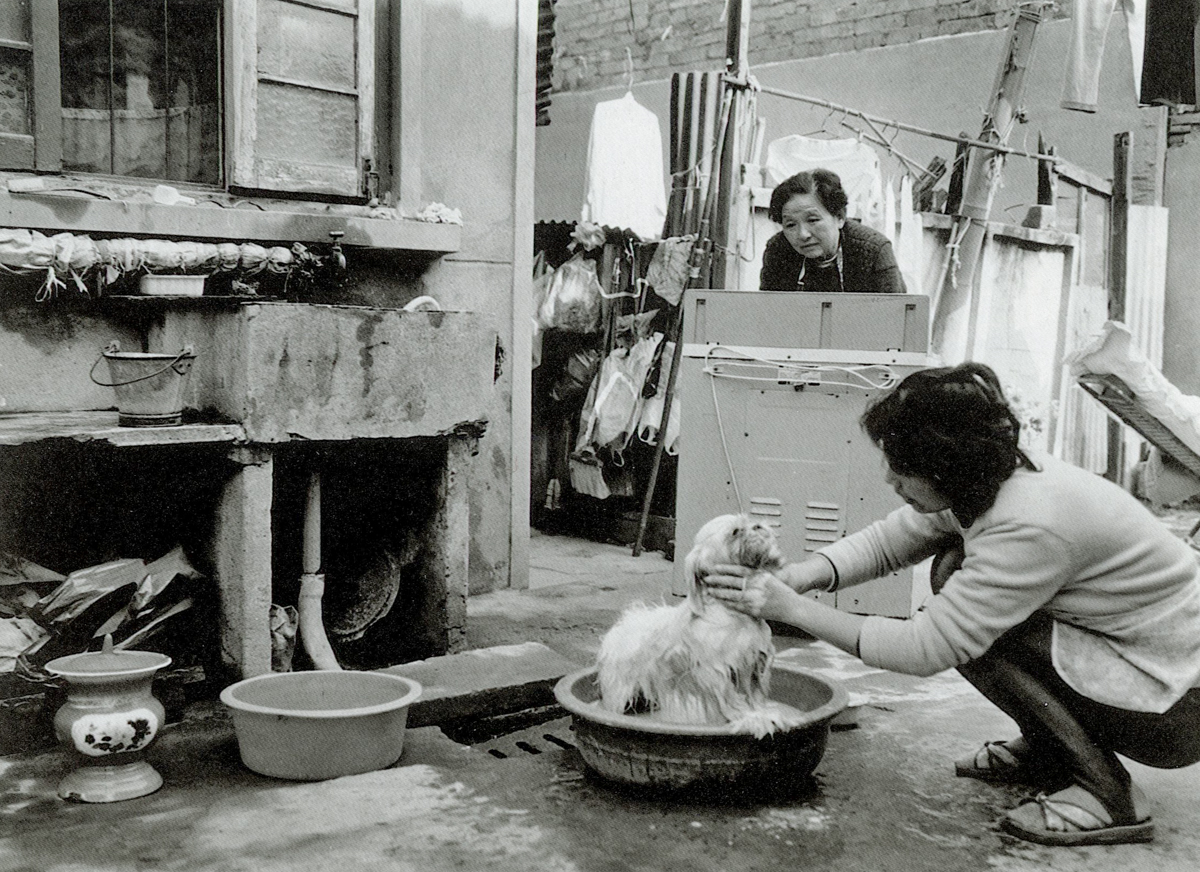 Hu Meijia gives her pet dog a bath on Lannidu Road in Shanghai, 1997. Hu spent 1,000 yuan to buy the dog from a breeder in the southwestern Yunnan province four years earlier. Courtesy of Wu Jianping