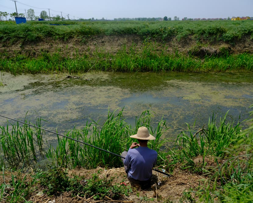 A villager fishes by a river that provides water for crawfish growing in a nearby pond, in Qianjiang, Hubei province, April 15, 2020. Shi Yangkun/Sixth Tone