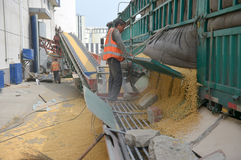 A worker unloads soybeans at a grain depot in Chengdu, Sichuan province, April 9, 2020. Wang Qin/Chengdu Business Daily/People Visual