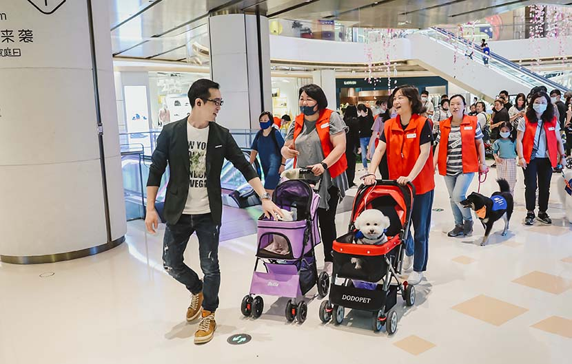 Participants in an animal-assisted therapy event escort their dogs through the shopping mall of the Bund Finance Center in Shanghai, May 17, 2020. Courtesy of the Bund Finance Center