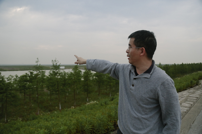 Zhang Dongsheng points to the wetland of Nanhui Dongtan, Shanghai, May 15, 2020. Li You/Sixth Tone
