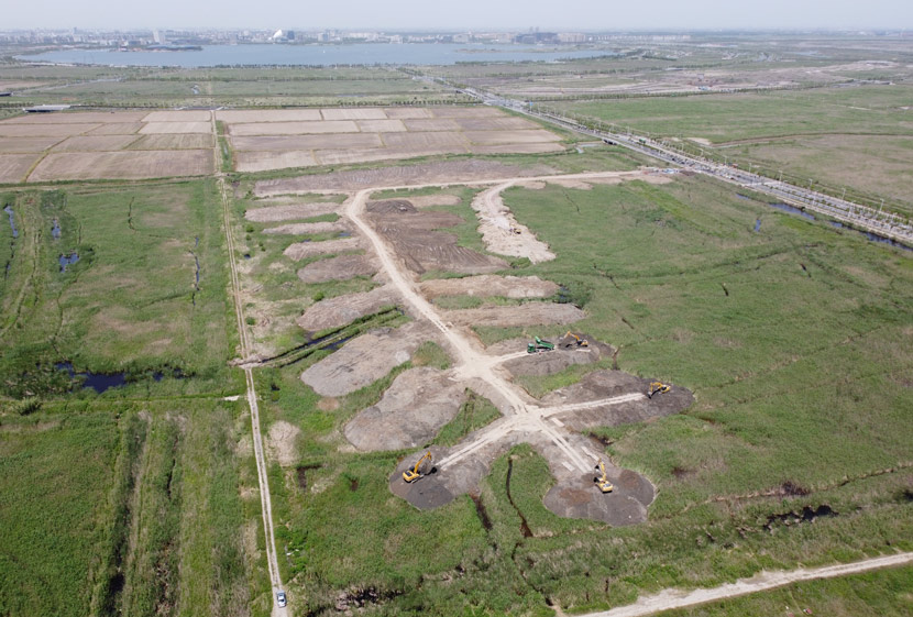 Bulldozers flatten a stretch of marshland for a massive tree-planting project in Nanhui Dongtan, Shanghai, May 13, 2020. Courtesy of Shengtai Nanhui