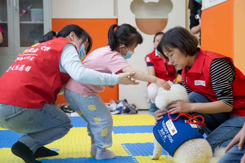 A girl plays with a therapy dog at a rehabilitation center in Shanghai, June 1, 2020. Shi Yangkun/Sixth Tone