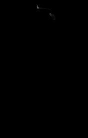 ZhengXuan