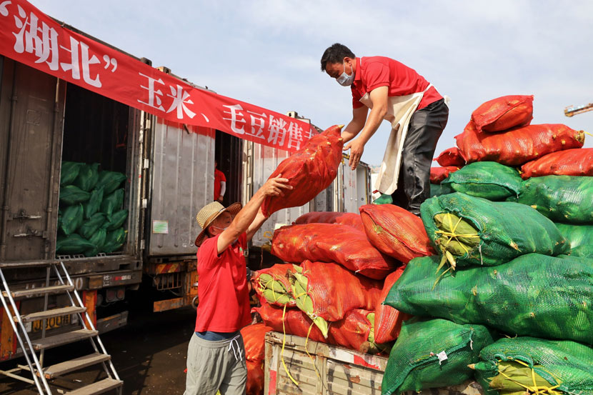 Workers transfer produce shipped from Hubei province at Xinfadi Agricultural Produce Wholesale Market in Beijing, June 8, 2020. IC
