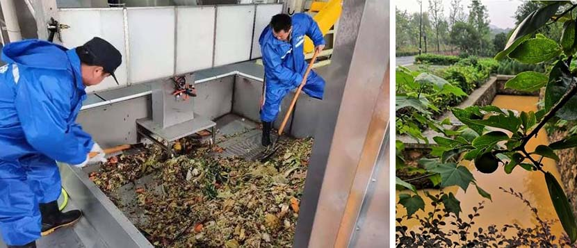 Left: Workers clear food scraps at the waste processing center in Hangzhou, Zhejiang province; right: A view of a polluted stream in Hubu Village, Hangzhou, Zhejiang province, July 2020. From @红星新闻 on Weibo