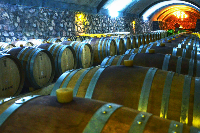 A view of the wine cellar at Sun Miao's vineyard in Yinchuan, Ningxia Hui Autonomous Region, April 19, 2015. Courtesy of Sun Miao