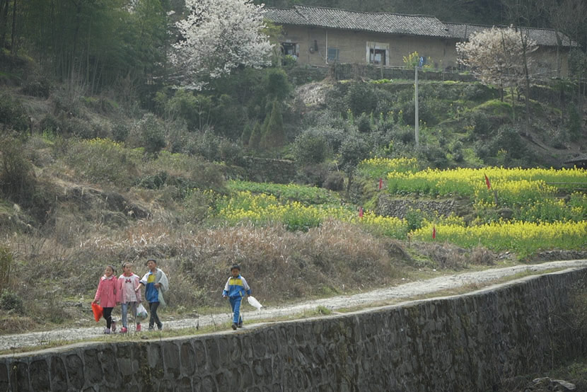 Children walk along a countryside road in Ankang, Shaanxi province, March 11, 2017. Chen Xi/Sixth Tone