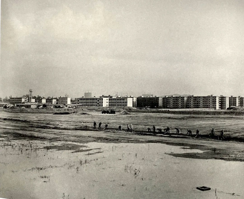 A view of Huaqiangbei area in Shenzhen, Guangdong province, 1981. Tang Benchi via Shenzhen Art Museum