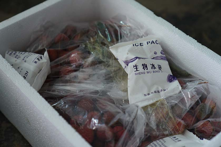 Cold packs are included in a plastic foam box of strawberries in Dongguan, Guangdong province, June 18, 2020. People Visual