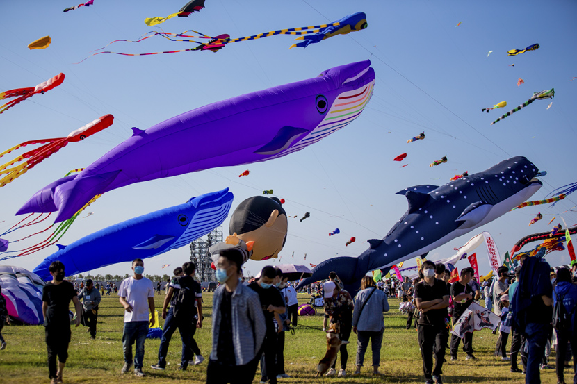 Kites flutter in the air during the 37th Weifang International Kite Festival in Weifang, Shandong province, Sept. 26, 2020. Miao Lu/People Visual